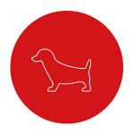 hund-ikon