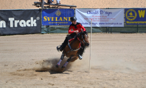 Westerngrenarna Barrel race och pole bending