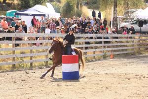Barrel race tävling - söndag - Frida Lindberg med Ridgehill Caramac